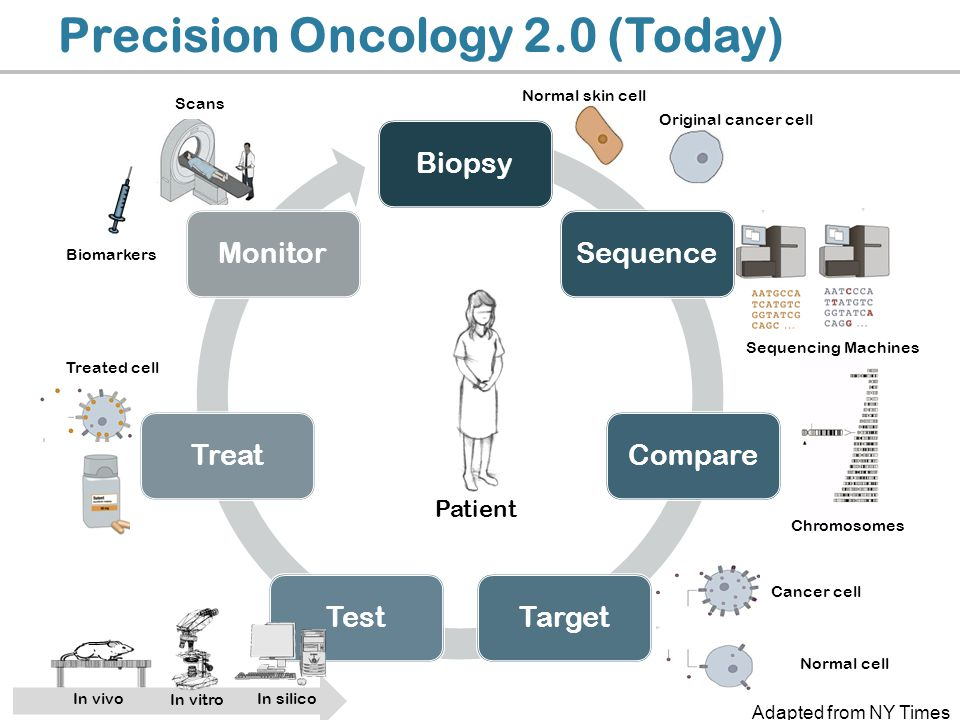 Biopsy Sequence Compare TargetTest Treat Monitor Precision Oncology 2.0 (Today) In silico In vivo In vitro Normal skin cell Sequencing Machines Chromo