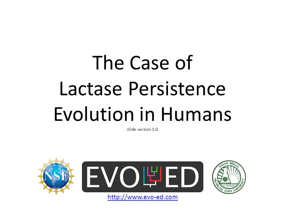 The Case of Lactase Persistence Evolution in Humans slide version 1.0 http://www.evo-ed.com