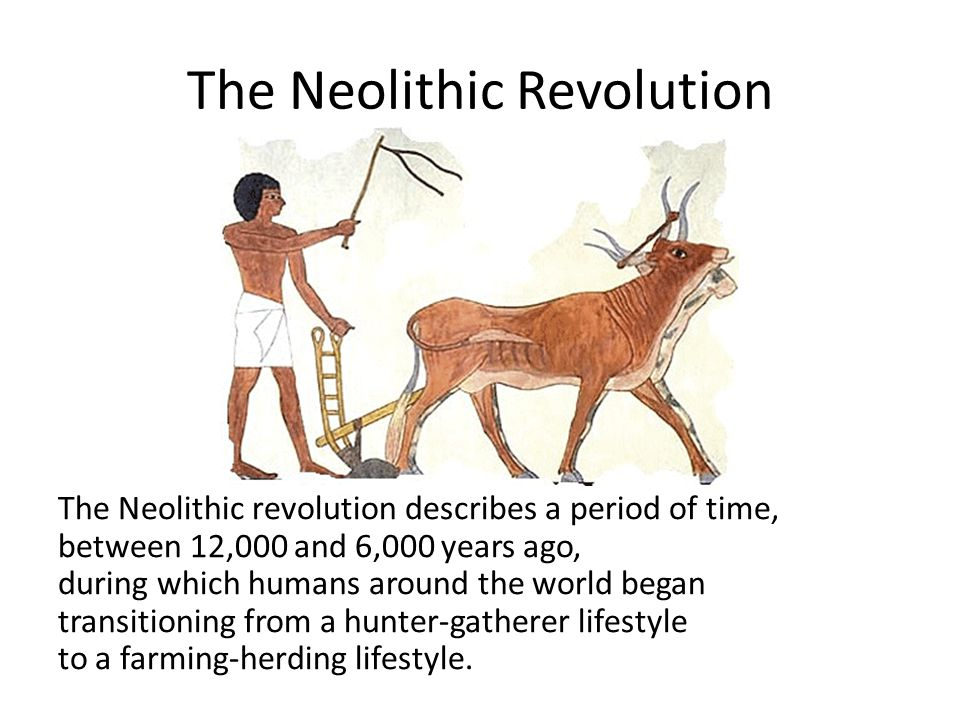 The Neolithic Revolution The Neolithic revolution describes a period of time, between 12,000 and 6,000 years ago, during which humans around the world