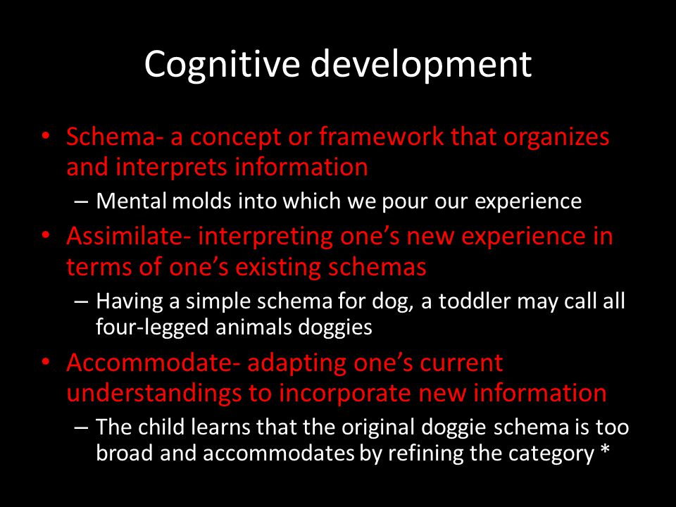 Cognitive development Schema- a concept or framework that organizes and interprets information – Mental molds into which we pour our experience Assimi