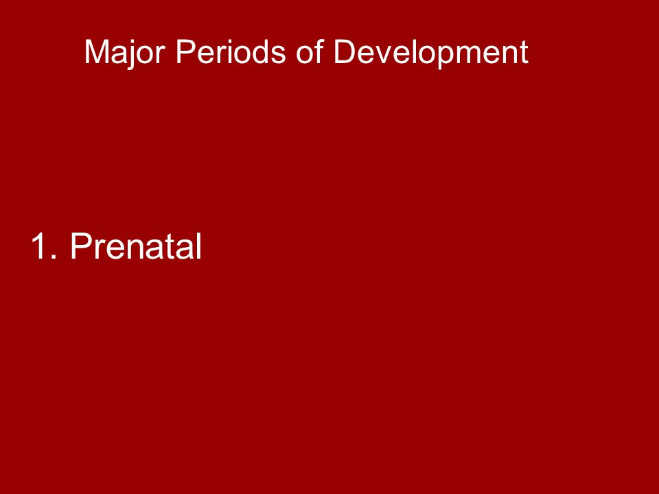 Major Periods of Development 2. Infancy – birth to 18-24 months