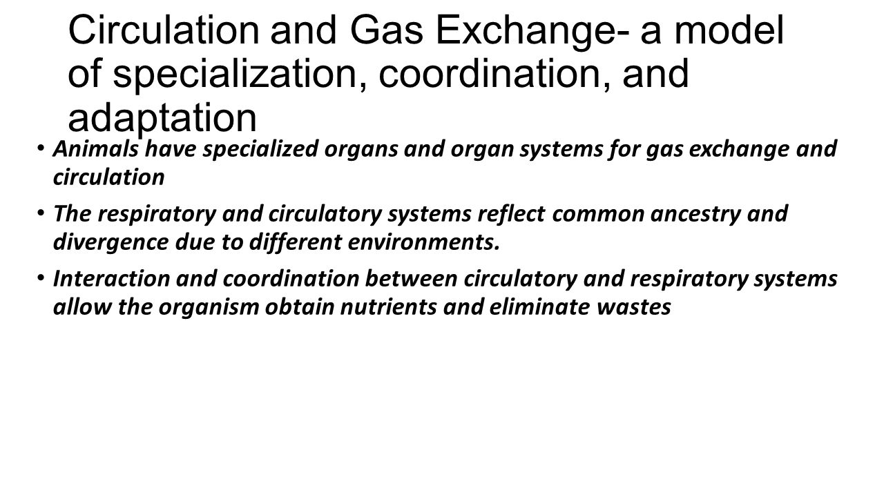 Circulation and Gas Exchange- a model of specialization, coordination, and adaptation Animals have specialized organs and organ systems for gas exchange and circulation The respiratory and circulatory systems reflect common ancestry and divergence due to different environments.