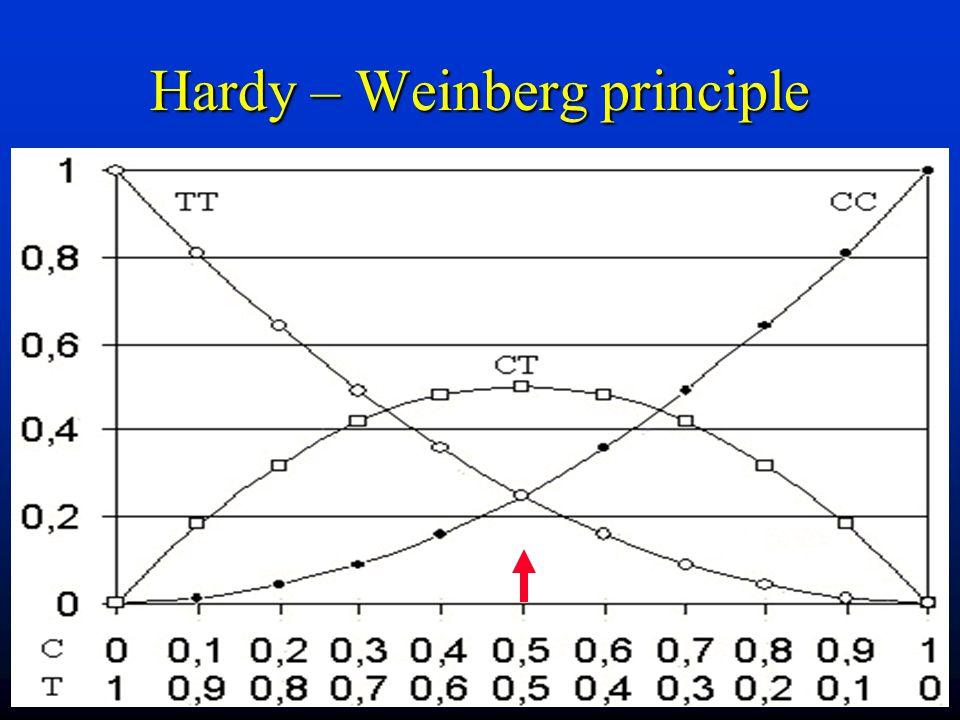 Hardy – Weinberg principle