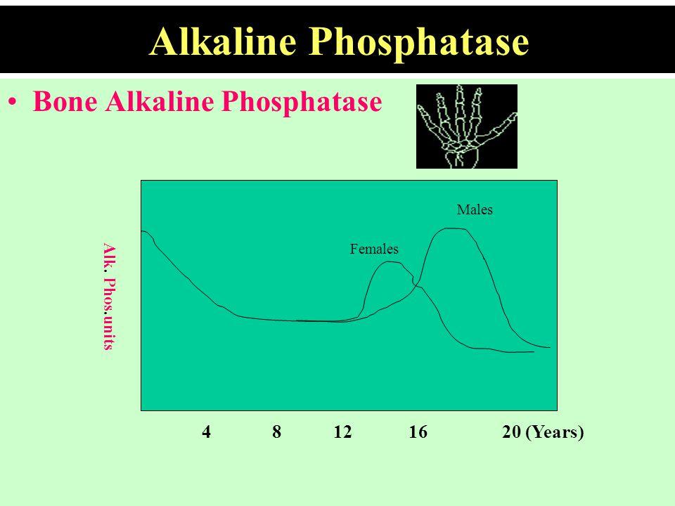 Alkaline Phosphatase Bone Alkaline Phosphatase Males Females 4 8 12 16 20 (Years) Alk. Phos.units