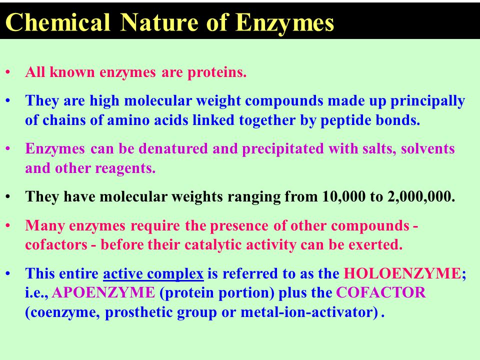 All known enzymes are proteins. They are high molecular weight compounds made up principally of chains of amino acids linked together by peptide bonds