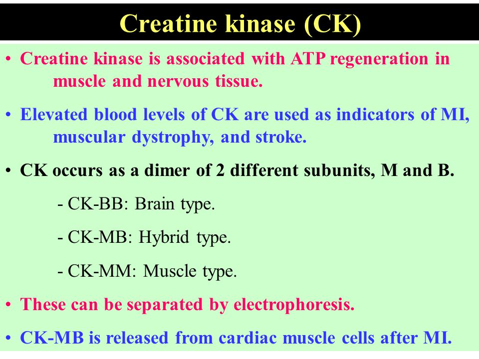 Creatine kinase is associated with ATP regeneration in muscle and nervous tissue. Elevated blood levels of CK are used as indicators of MI, muscular d
