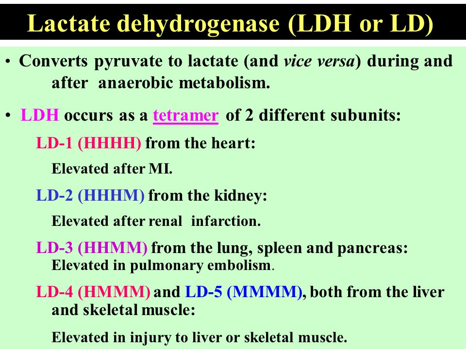 Converts pyruvate to lactate (and vice versa) during and after anaerobic metabolism. LDH occurs as a tetramer of 2 different subunits: LD-1 (HHHH) fro