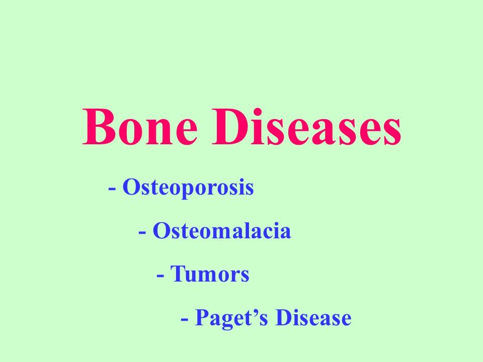 Bone Diseases - Osteoporosis - Osteomalacia - Tumors - Paget's Disease