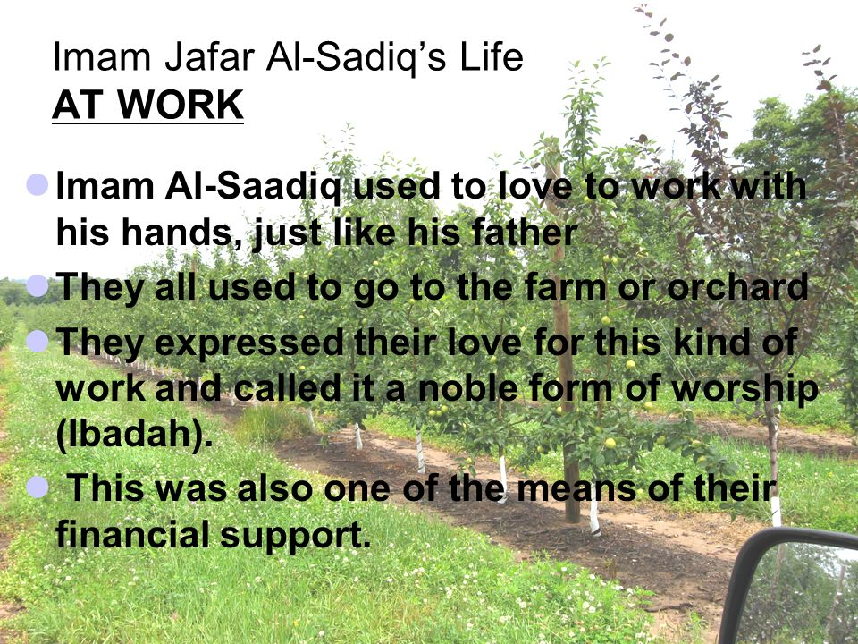 Imam Jafar Al-Sadiq's Life AT WORK Imam Al ‑ Saadiq used to love to work with his hands, just like his father They all used to go to the farm or orcha