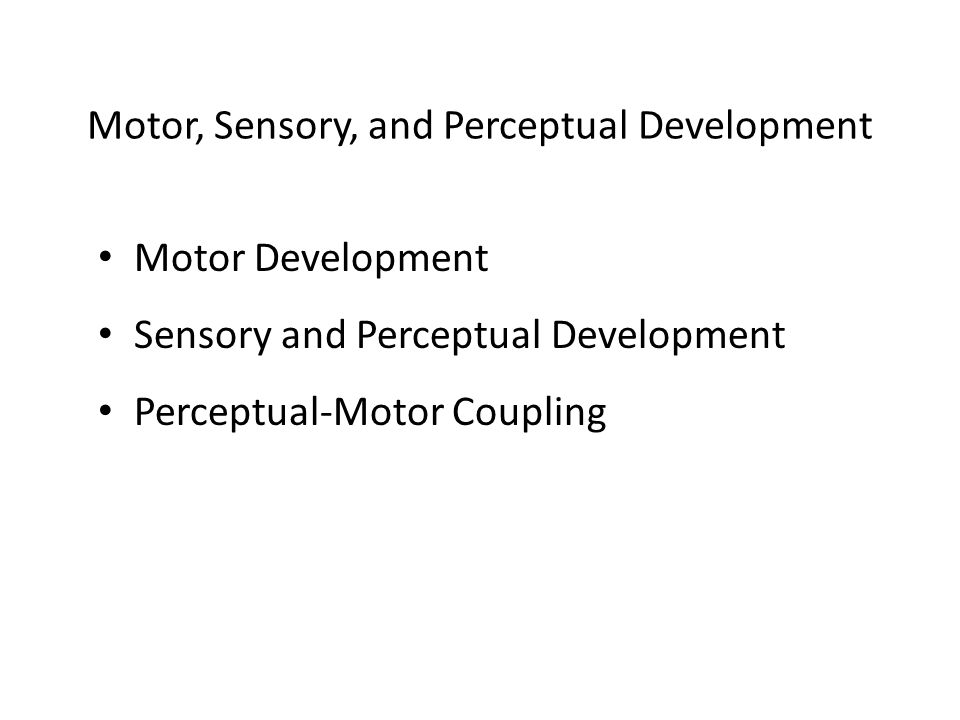 Motor Development Sensory and Perceptual Development Perceptual-Motor Coupling