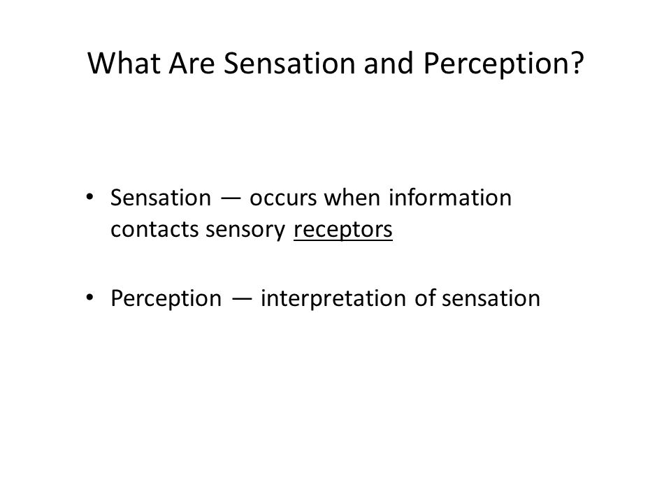 What Are Sensation and Perception.