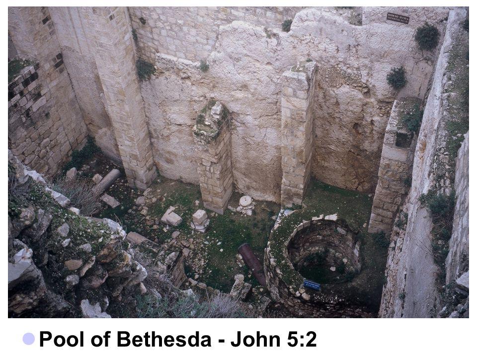 Pool of Bethesda - John 5:2
