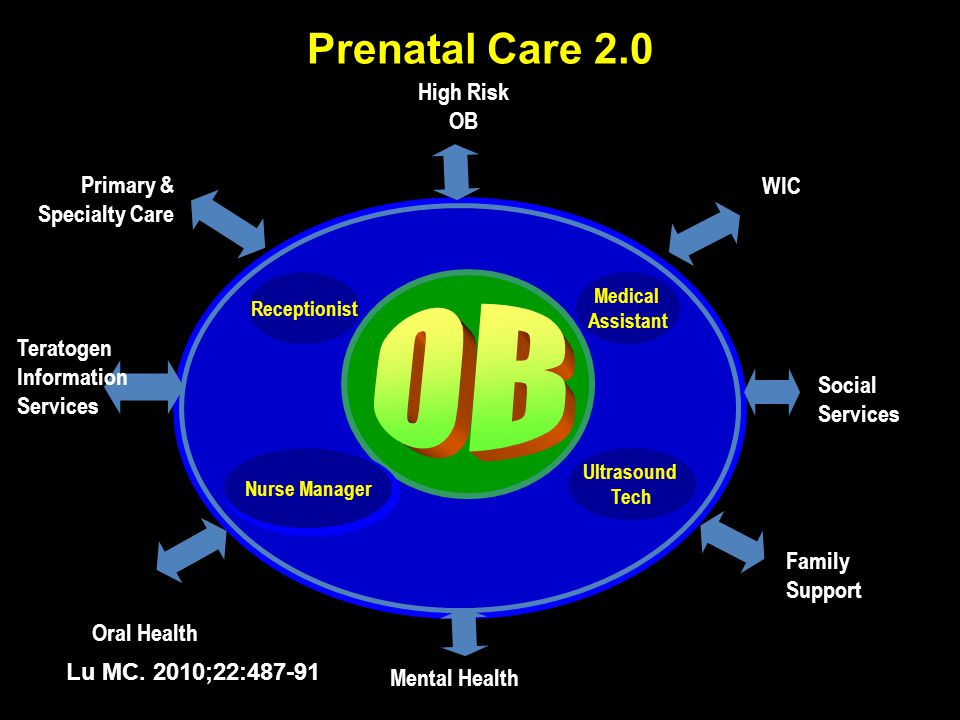 Prenatal Care 2.0 Oral Health Teratogen Information Services Primary & Specialty Care Family Support Social Services WIC Receptionist Medical Assistan