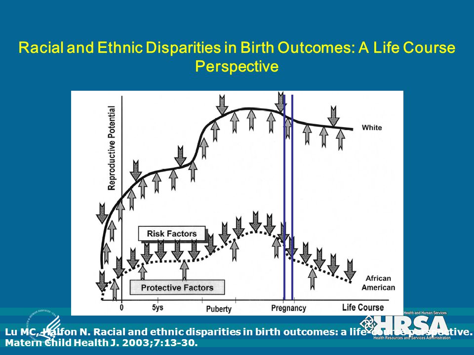 Racial and Ethnic Disparities in Birth Outcomes: A Life Course Perspective Lu MC, Halfon N.