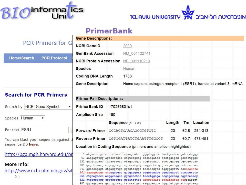 Web Site: http://pga.mgh.harvard.edu/primerbank/index.html More Info: http://www.ncbi.nlm.nih.gov/sites/entrez Db=pubmed&Cmd=ShowDetailView&TermToSearch=14654707 http://www.ncbi.nlm.nih.gov/sites/entrez Db=pubmed&Cmd=ShowDetailView&TermToSearch=14654707 Dr.