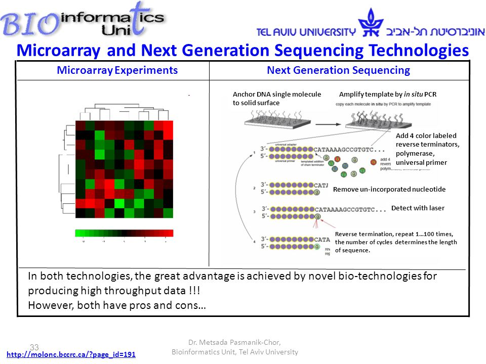 Microarray Experiments Probes for genes are located on the chip.