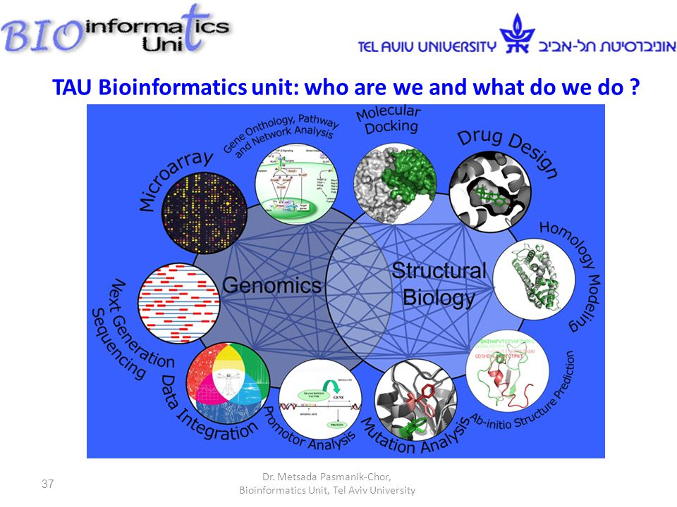 37 TAU Bioinformatics unit: who are we and what do we do