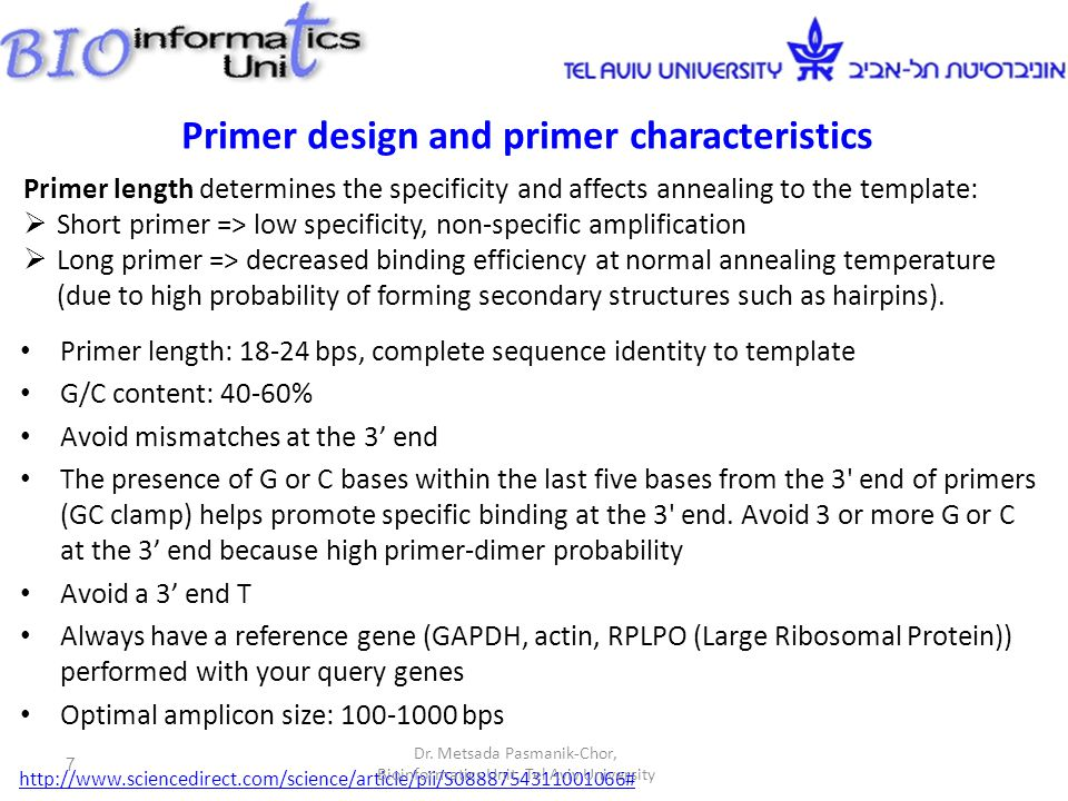 Primer length determines the specificity and affects annealing to the template:  Short primer => low specificity, non-specific amplification  Long primer => decreased binding efficiency at normal annealing temperature (due to high probability of forming secondary structures such as hairpins).