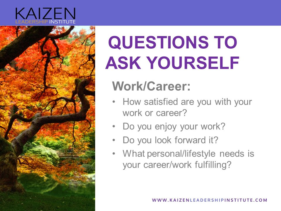 Work/Career: How satisfied are you with your work or career.