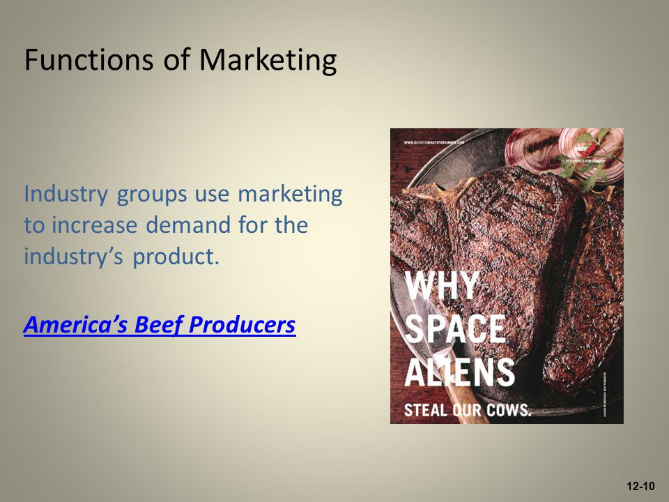 12-10 Industry groups use marketing to increase demand for the industry's product.