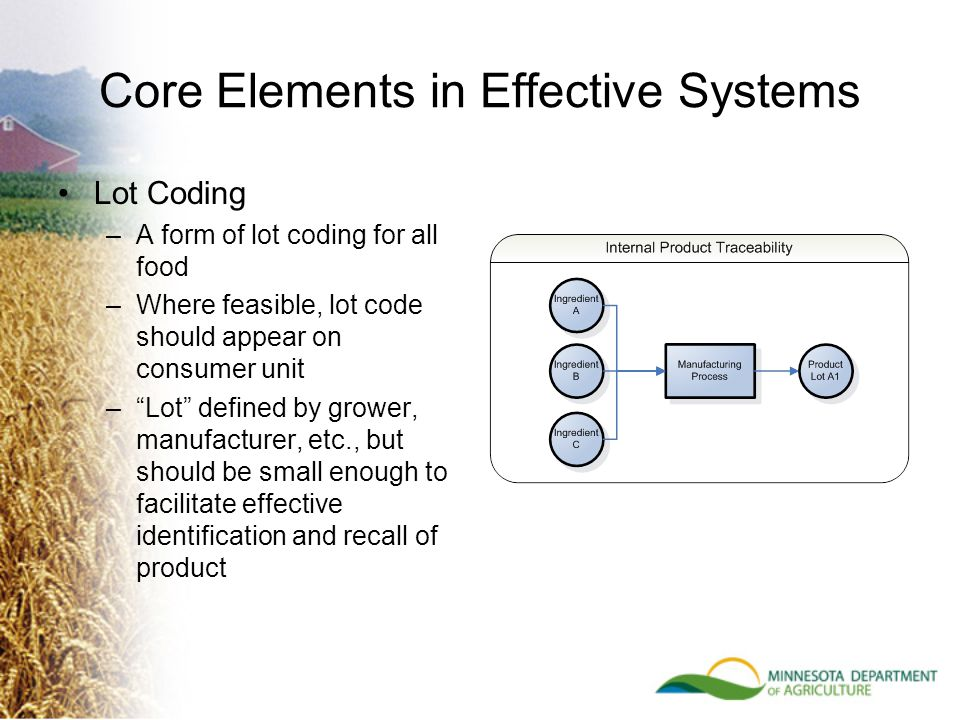 Core Elements in Effective Systems Lot Coding –A form of lot coding for all food –Where feasible, lot code should appear on consumer unit – Lot defined by grower, manufacturer, etc., but should be small enough to facilitate effective identification and recall of product