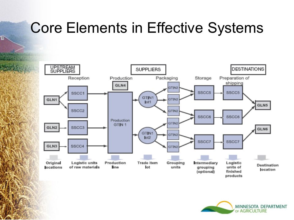 Core Elements in Effective Systems
