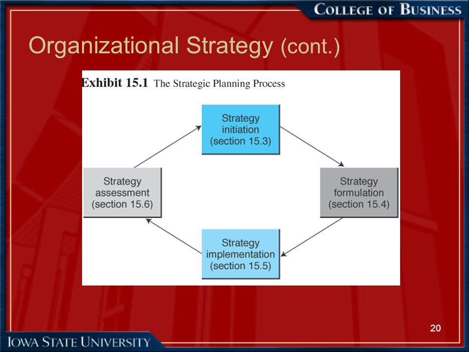 20 Organizational Strategy (cont.)