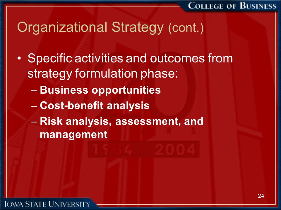 24 Organizational Strategy (cont.) Specific activities and outcomes from strategy formulation phase: –Business opportunities –Cost-benefit analysis –R