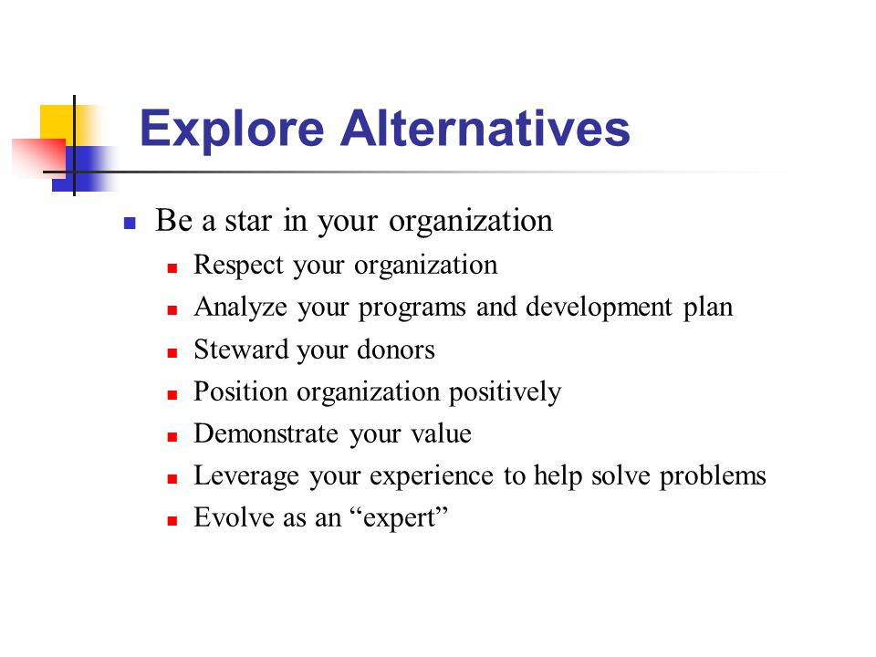 Explore Alternatives Be a star in your organization Respect your organization Analyze your programs and development plan Steward your donors Position organization positively Demonstrate your value Leverage your experience to help solve problems Evolve as an expert