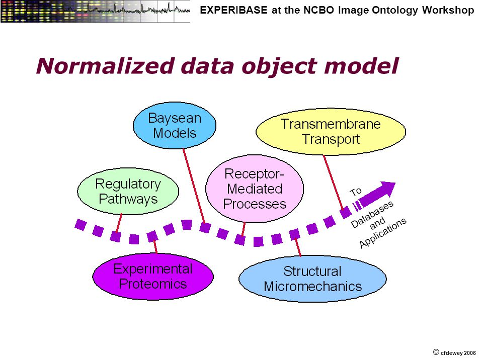 © © cfdewey 2006 EXPERIBASE at the NCBO Image Ontology Workshop Normalized data object model