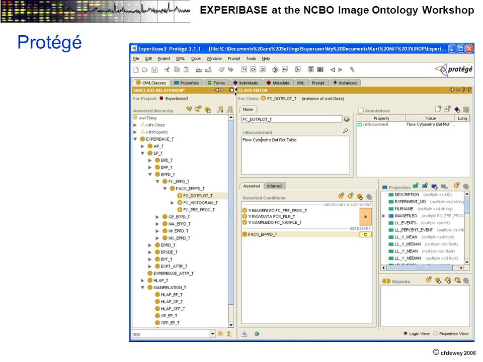 © © cfdewey 2006 EXPERIBASE at the NCBO Image Ontology Workshop Protégé