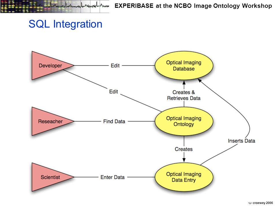 © © cfdewey 2006 EXPERIBASE at the NCBO Image Ontology Workshop SQL Integration