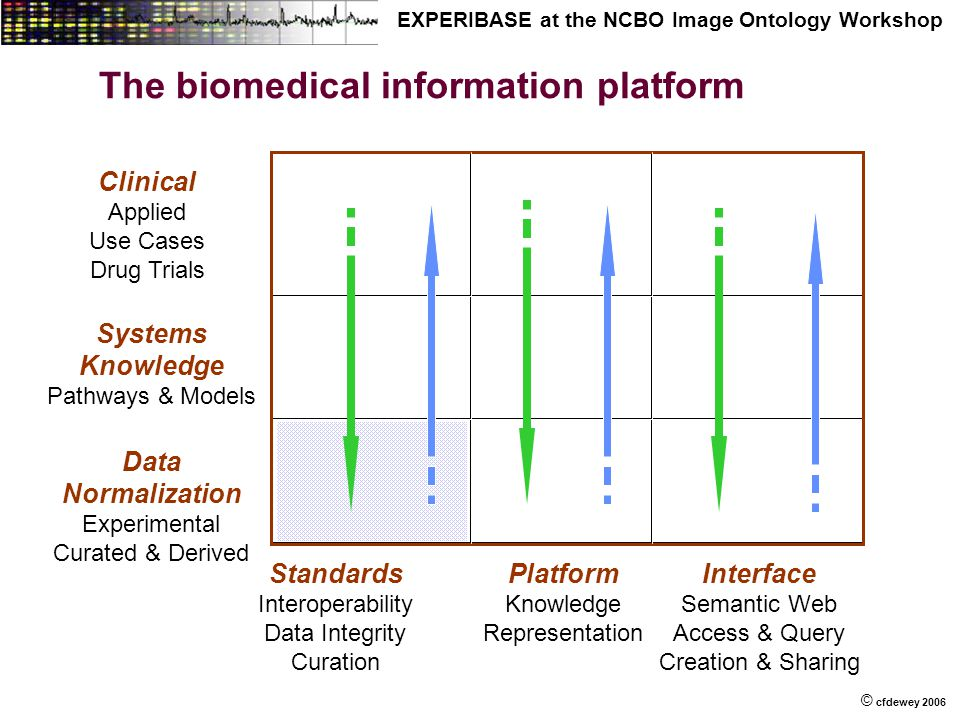 © © cfdewey 2006 EXPERIBASE at the NCBO Image Ontology Workshop Systems Knowledge Pathways & Models Data Normalization Experimental Curated & Derived Clinical Applied Use Cases Drug Trials Standards Interoperability Data Integrity Curation Platform Knowledge Representation Interface Semantic Web Access & Query Creation & Sharing The biomedical information platform