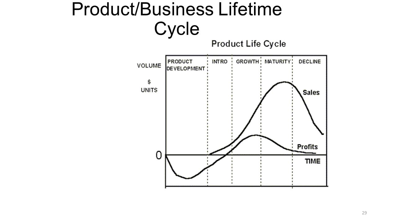 Product/Business Lifetime Cycle 29