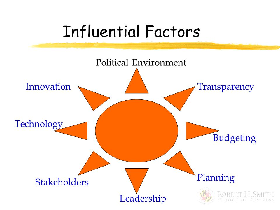 Influential Factors Political Environment Transparency Budgeting Planning Leadership Stakeholders Technology Innovation