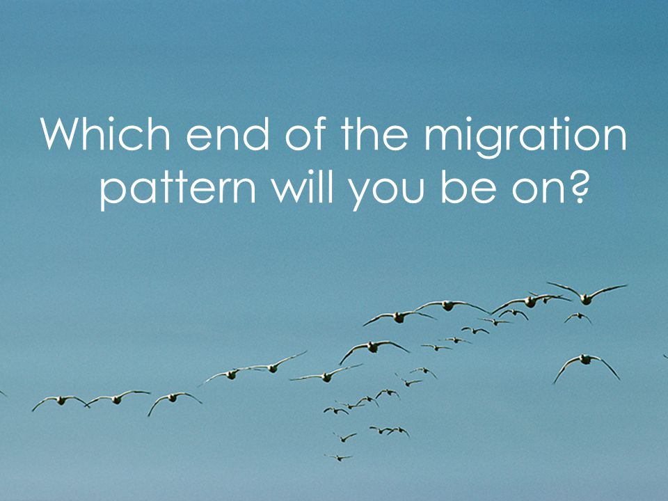 Page 5 Which end of the migration pattern will you be on