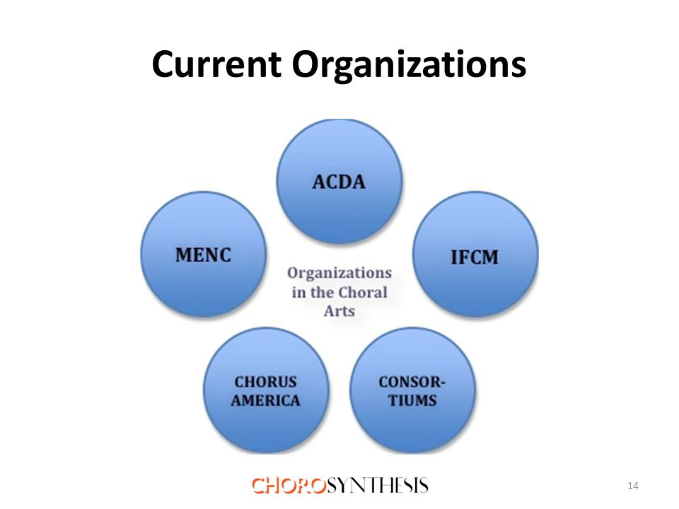 Current Organizations 14