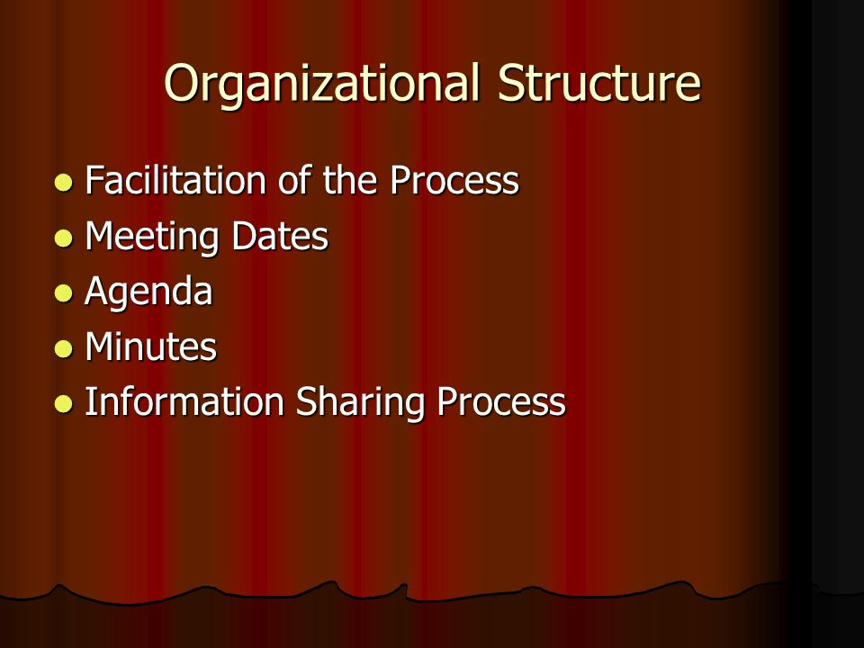 Organizational Structure Facilitation of the Process Facilitation of the Process Meeting Dates Meeting Dates Agenda Agenda Minutes Minutes Information
