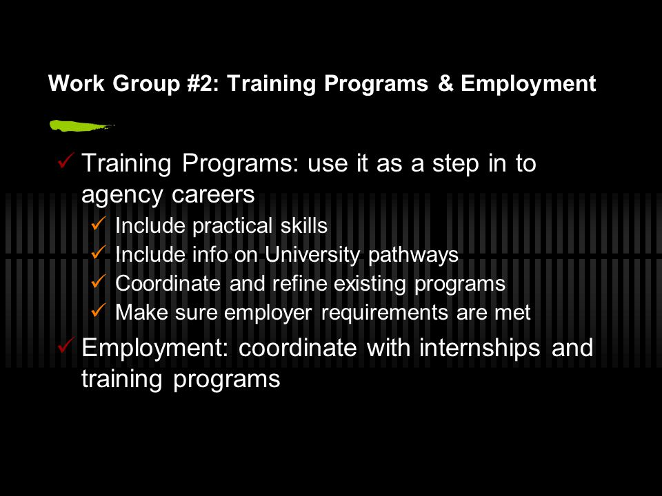 Work Group #2: Training Programs & Employment Training Programs: use it as a step in to agency careers Include practical skills Include info on University pathways Coordinate and refine existing programs Make sure employer requirements are met Employment: coordinate with internships and training programs
