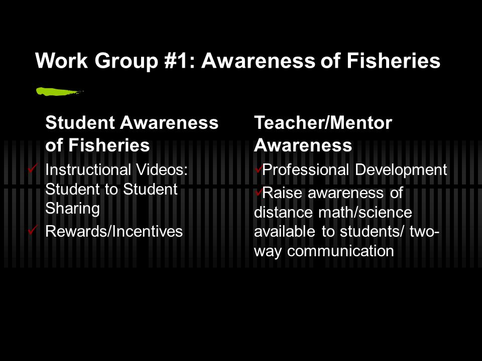 Work Group #1: Awareness of Fisheries Student Awareness of Fisheries Instructional Videos: Student to Student Sharing Rewards/Incentives Teacher/Mentor Awareness Professional Development Raise awareness of distance math/science available to students/ two- way communication