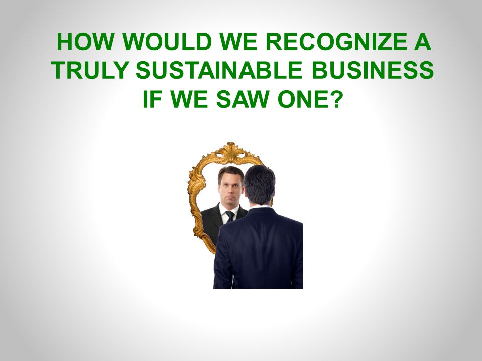 HOW WOULD WE RECOGNIZE A TRULY SUSTAINABLE BUSINESS IF WE SAW ONE