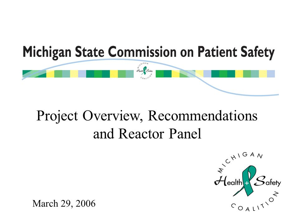 March 29, 2006 Project Overview, Recommendations and Reactor Panel