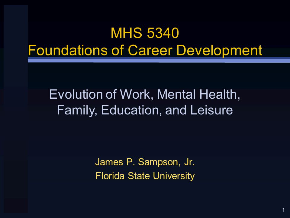 1 MHS 5340 Foundations of Career Development James P.