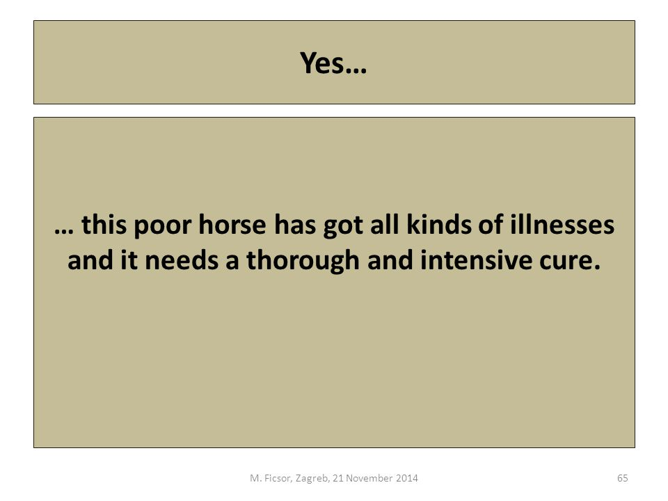 Yes… … this poor horse has got all kinds of illnesses and it needs a thorough and intensive cure.