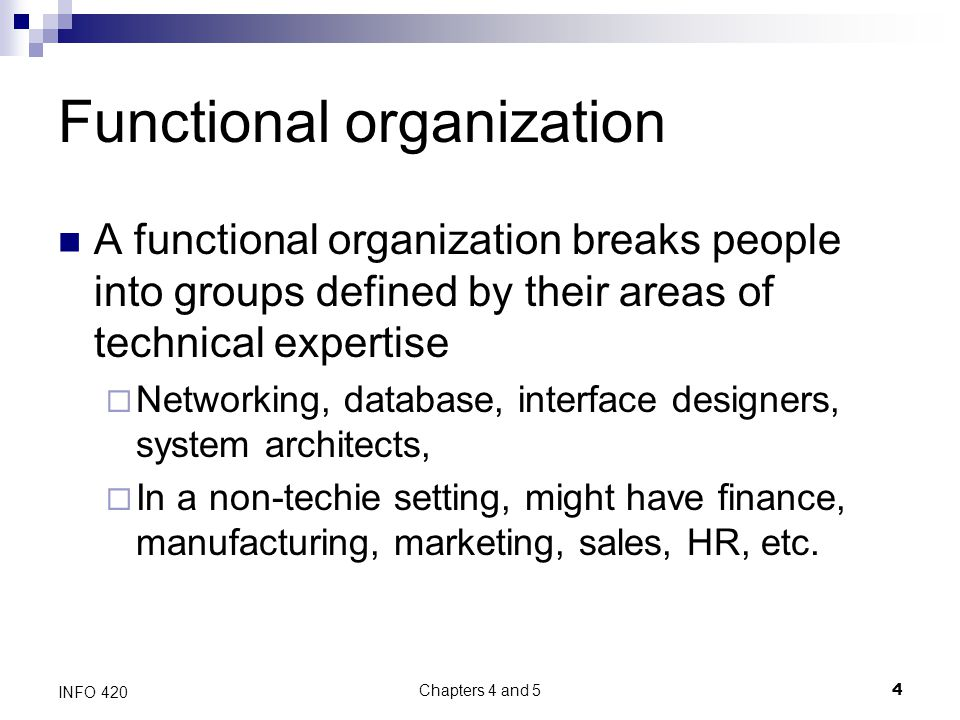 Chapters 4 and 5 4 INFO 420 Functional organization A functional organization breaks people into groups defined by their areas of technical expertise  Networking, database, interface designers, system architects,  In a non-techie setting, might have finance, manufacturing, marketing, sales, HR, etc.