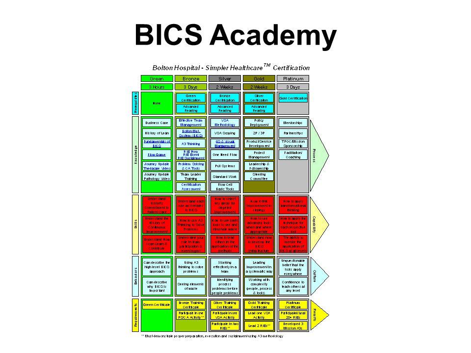 BICS Academy