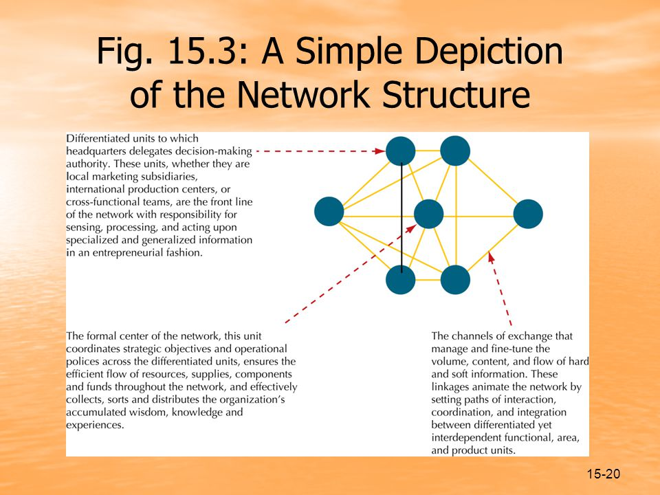 15-20 Fig. 15.3: A Simple Depiction of the Network Structure