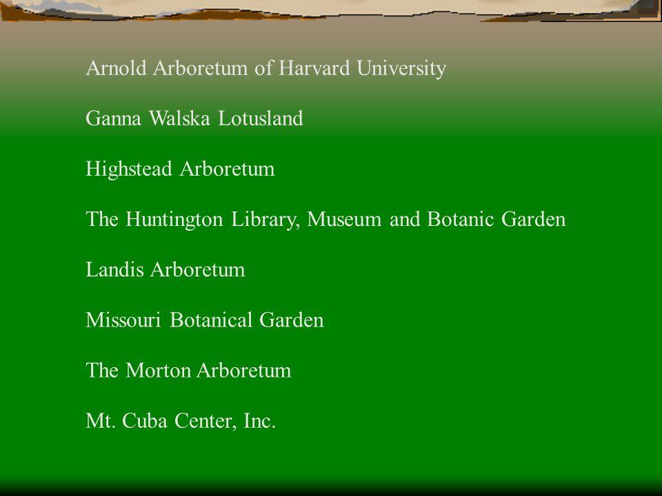 Arnold Arboretum of Harvard University Ganna Walska Lotusland The Huntington Library, Museum and Botanic Garden Highstead Arboretum Landis Arboretum M