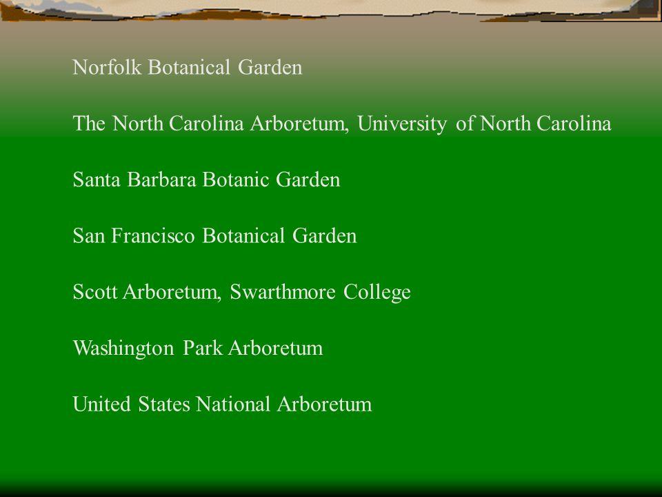 United States National Arboretum Washington Park Arboretum Scott Arboretum, Swarthmore College San Francisco Botanical Garden Santa Barbara Botanic Ga