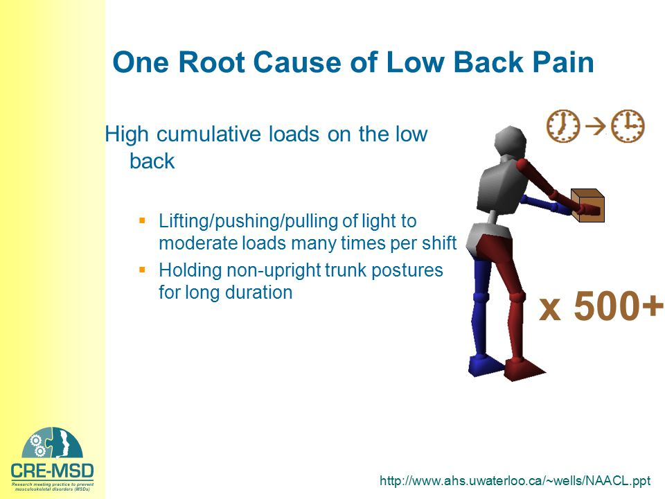 One Root Cause of Low Back Pain High cumulative loads on the low back  Lifting/pushing/pulling of light to moderate loads many times per shift  Hold